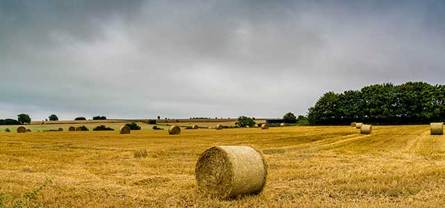 Autumn Cotswolds Hay bales by Steve Immerman