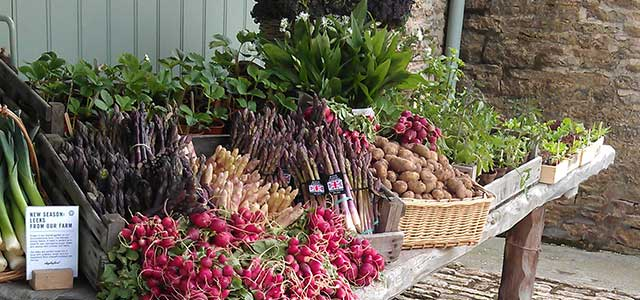 Spring Seasonal Produce in the Cotswolds