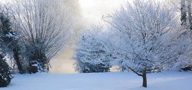 Winter Snowy Landscape Cotswolds