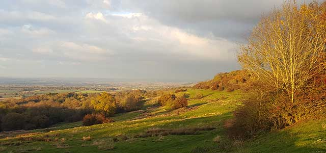 Autumn at Dovers Hill
